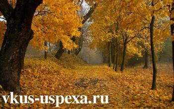 Хмурая осенняя погода и ее влияние на человека, как осень влияет на человека