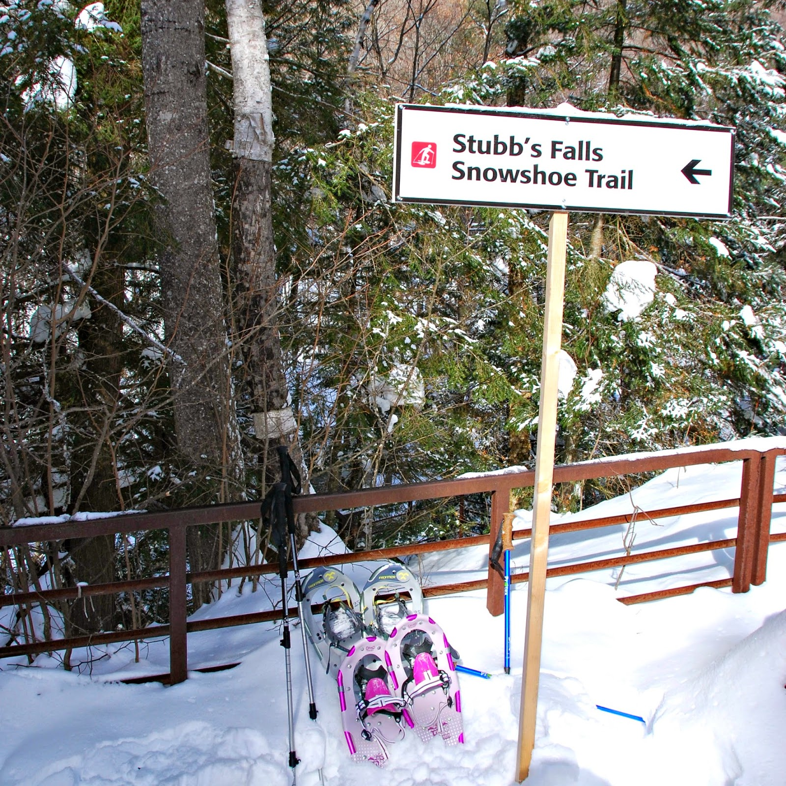 Snowshoe Trail sign with snow and snowshoes