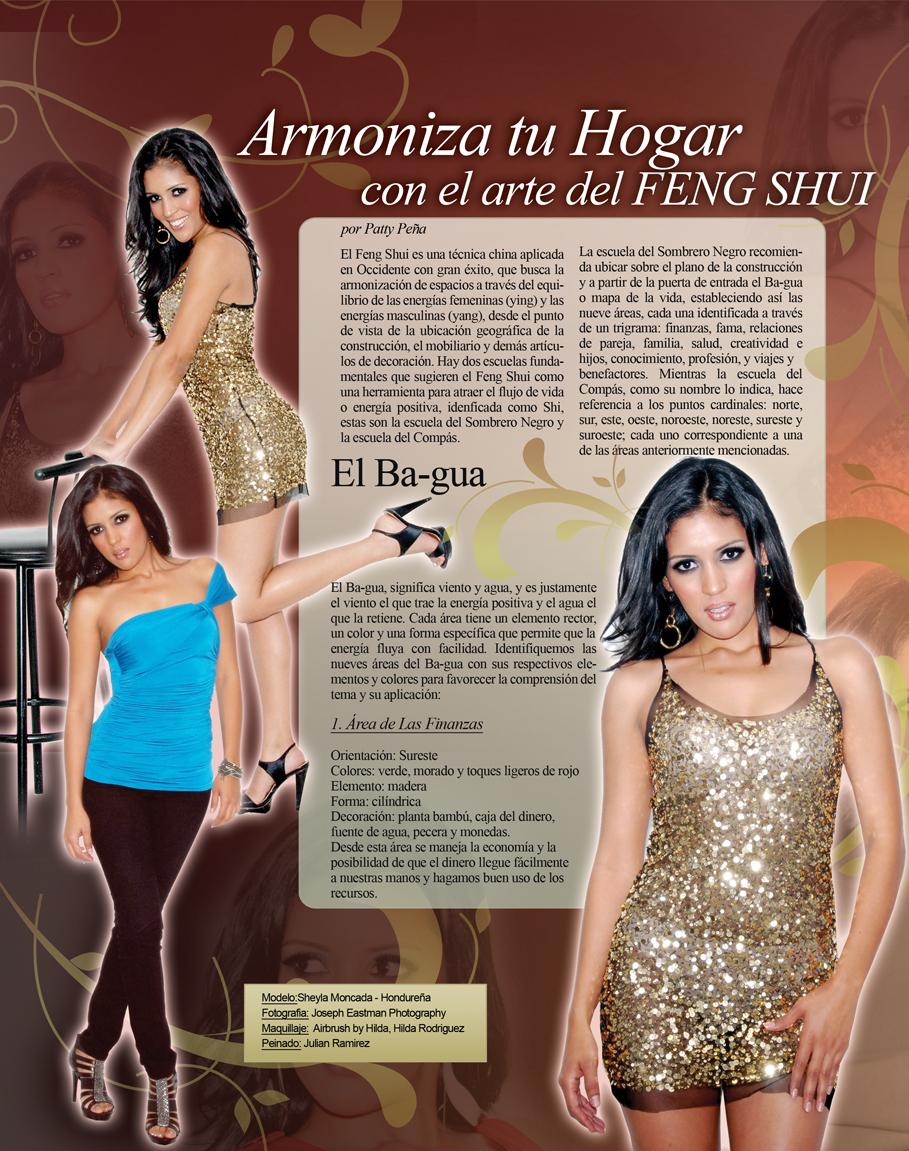 Revista hispana magazine for El arte del feng shui