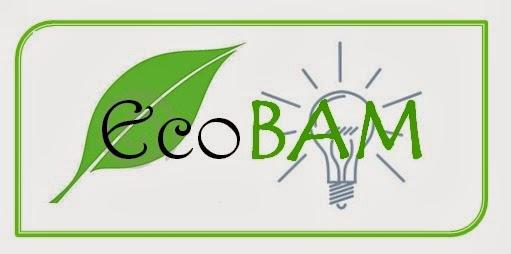 EcoBAM