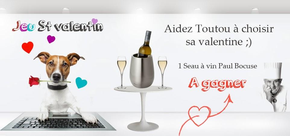 1 seau à vin/champagne Paul Bocuse Veto Malin