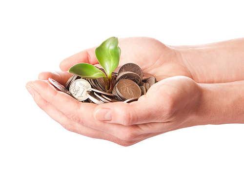 Make your Money Grow