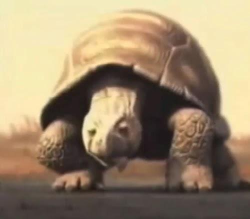 Propaganda da tartaruga da Brahma apresentada no começo do ano 2000.