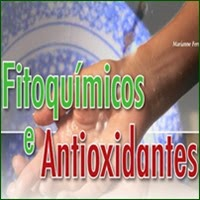 A importância dos alimentos fitoquímicos para a saúde.