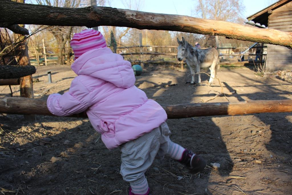Kinderbauernhof Pinke-Panke