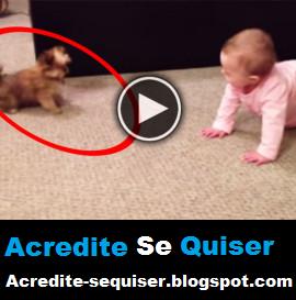 Vídeo Mostra a Incrível Comunicação Entre Um Cachorro e um Bebê. Que Coisa Fofa e Boa de Se Ver =)