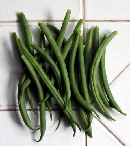 First garden green beans of the year