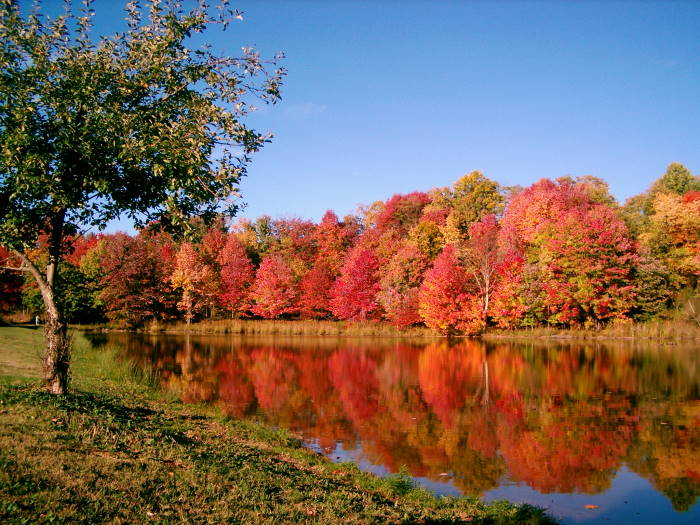 Staystillreviews 10 Awesome Things To Do In The Autumn In