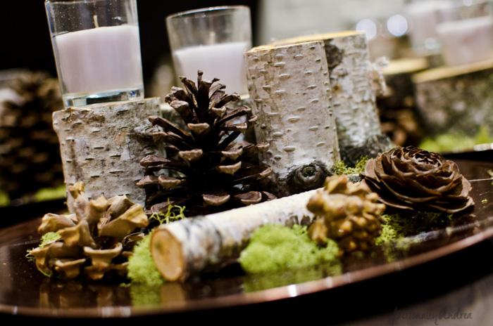 Birch Centrepiece | birch, pinecone, moss, candle | personallyandrea.com