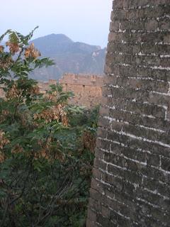 sumac along the Great Wall