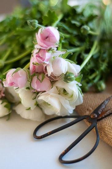 Sköna blommor...