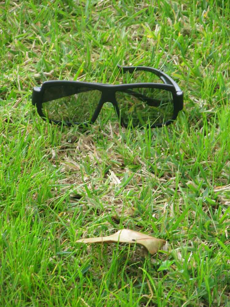 sunglasses and a leaf in the grass remind me of a face (c) David Ocker