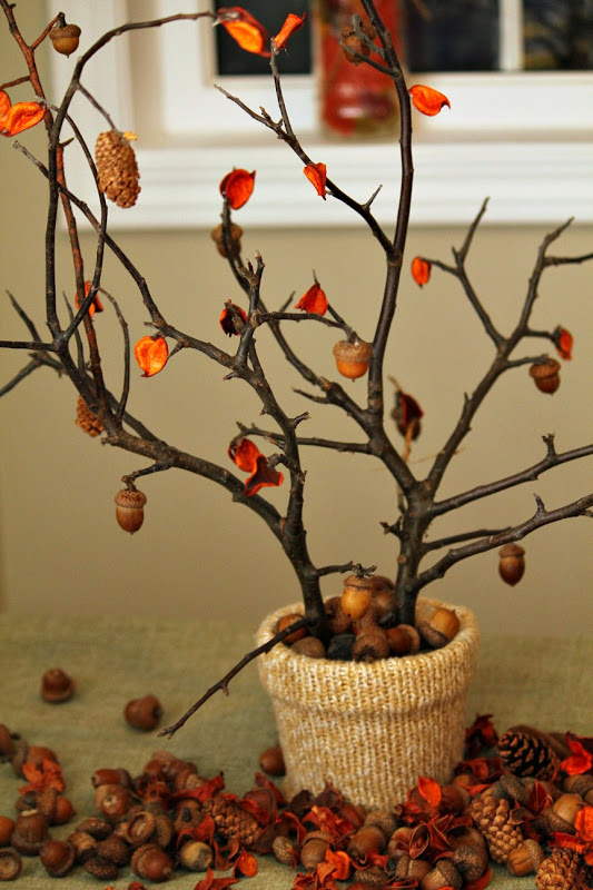Turtles and tails fall tabletop centerpiece a