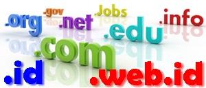kelebihan dan kekurangan menggunakan custom domain tld blogger