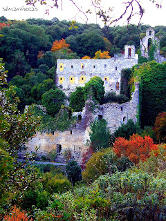 otoño en santa catalina, jardín botánico Álava-