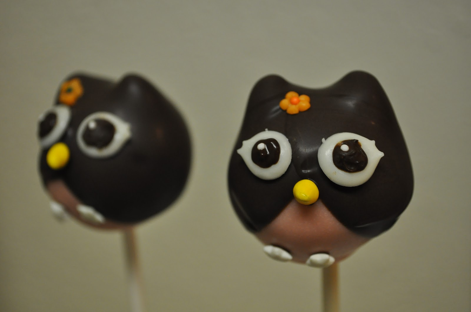 Old Soul Threads: owl cake pops