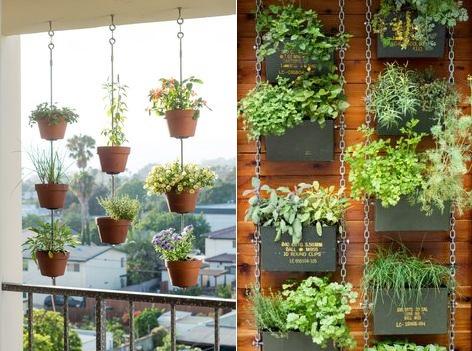 Isabellices um jardim pra chamar de meu - Plantas decorativas de interior ...