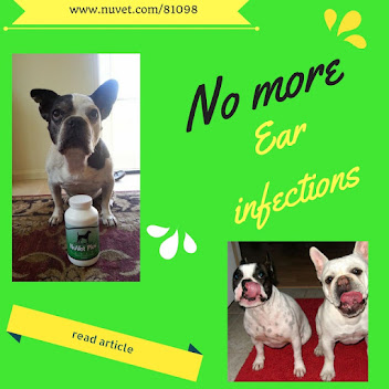 Chronic Ear infections?  SEE here ~~