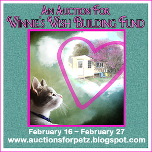 Help Raise Funds for New Cat House