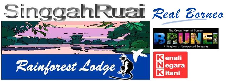 Singgah Ruai - Product and Services