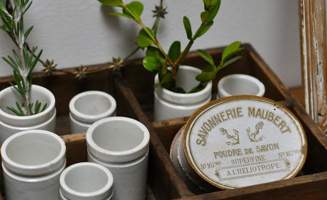 petits pots de pharmacie boite de poudre de savon maubert