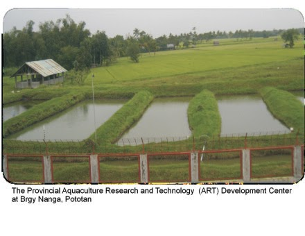 Simply business aart providing fish farming technology for Fish farming business