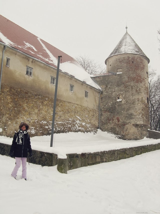 Snowy winter and castle in Austria images