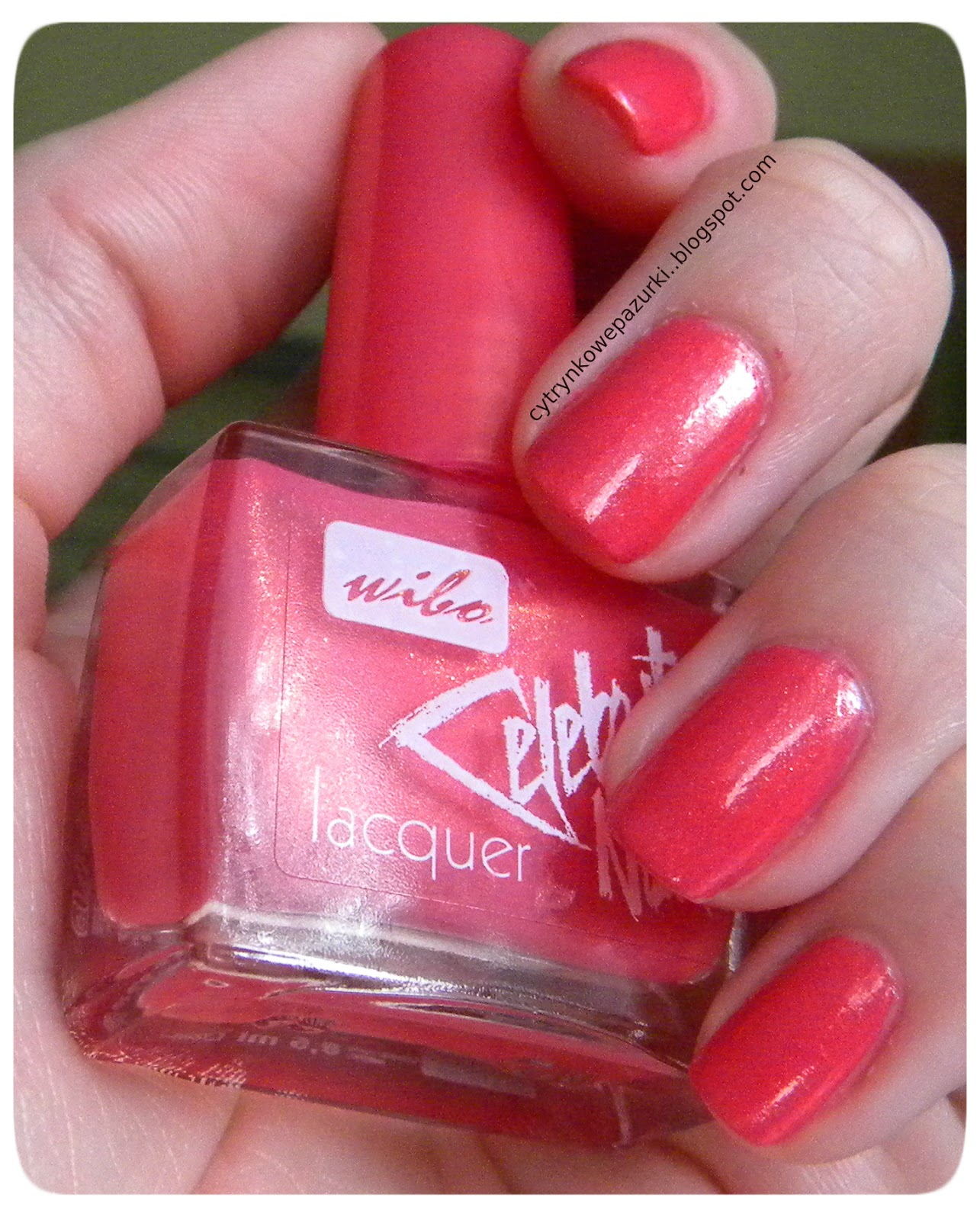 Wibo Celebrity nr 3 Nails Sweet Candy