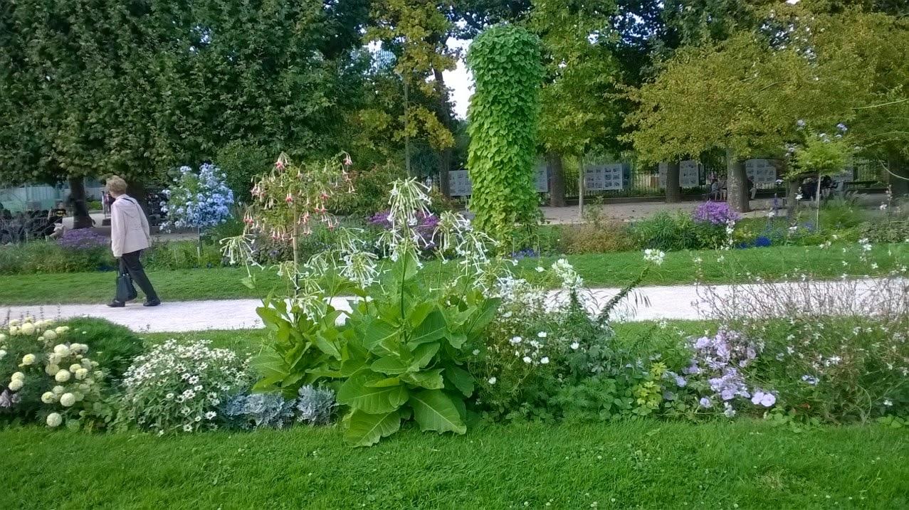 Attivarte il jardin des plantes e gli angoli fioriti di - Angoli di giardino ...