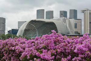 My Singapore Photo Journal 我的新加坡照片日志