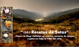 """Concurso """"Las 1001 recetas de setas"""""""