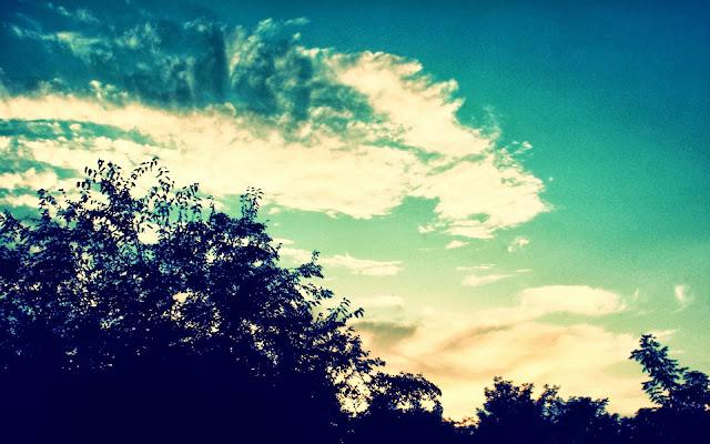 Sky Tree HD