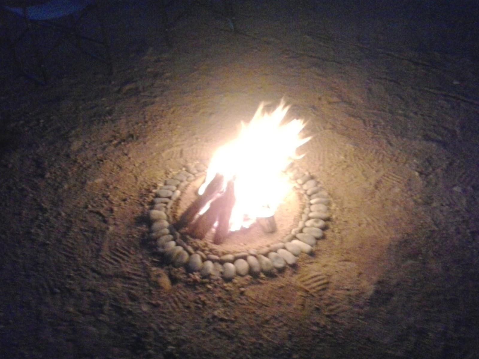 fire bush television namibia safari
