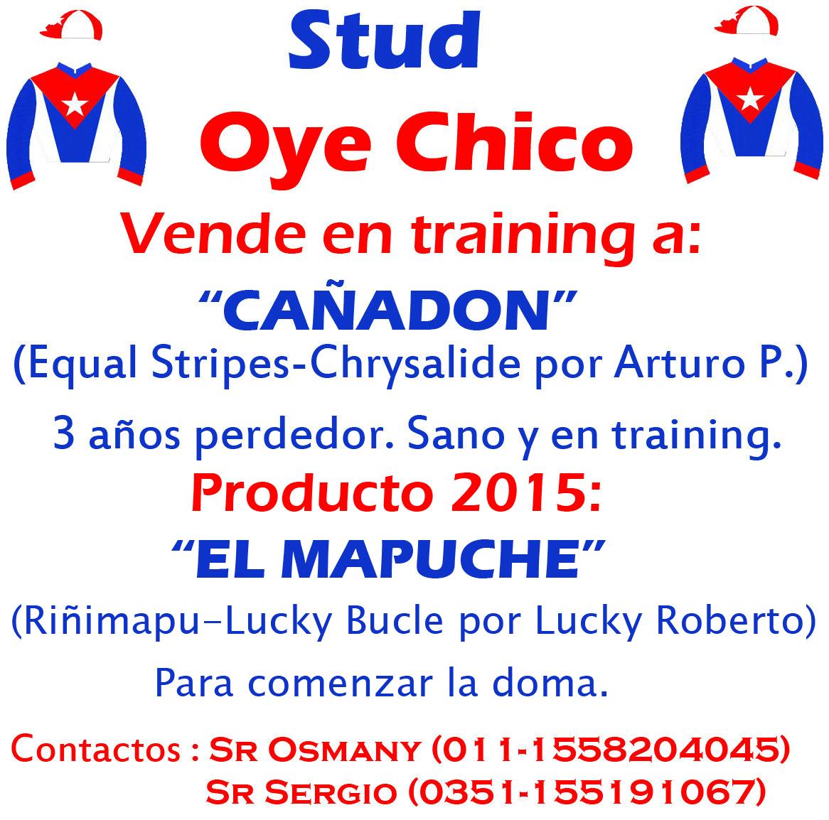 OYE CHICO 2