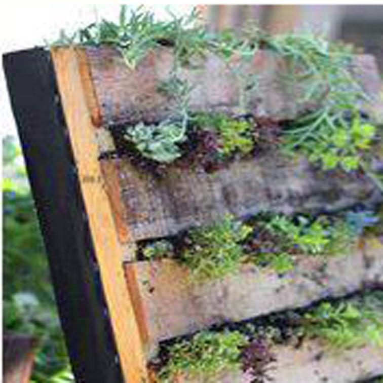 Un orto fai da te verticale o fioriera verticale da giardino adatto