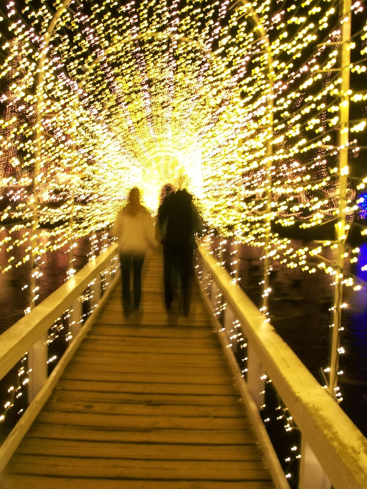 Texasdaisey Creations: Festival of Lights