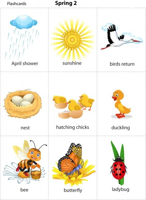 Animals Pictures For Kids