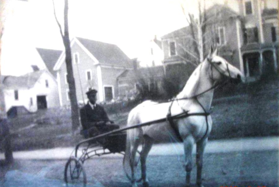 The Fredericton Scene  The History Of Harness Racing In Woodstock