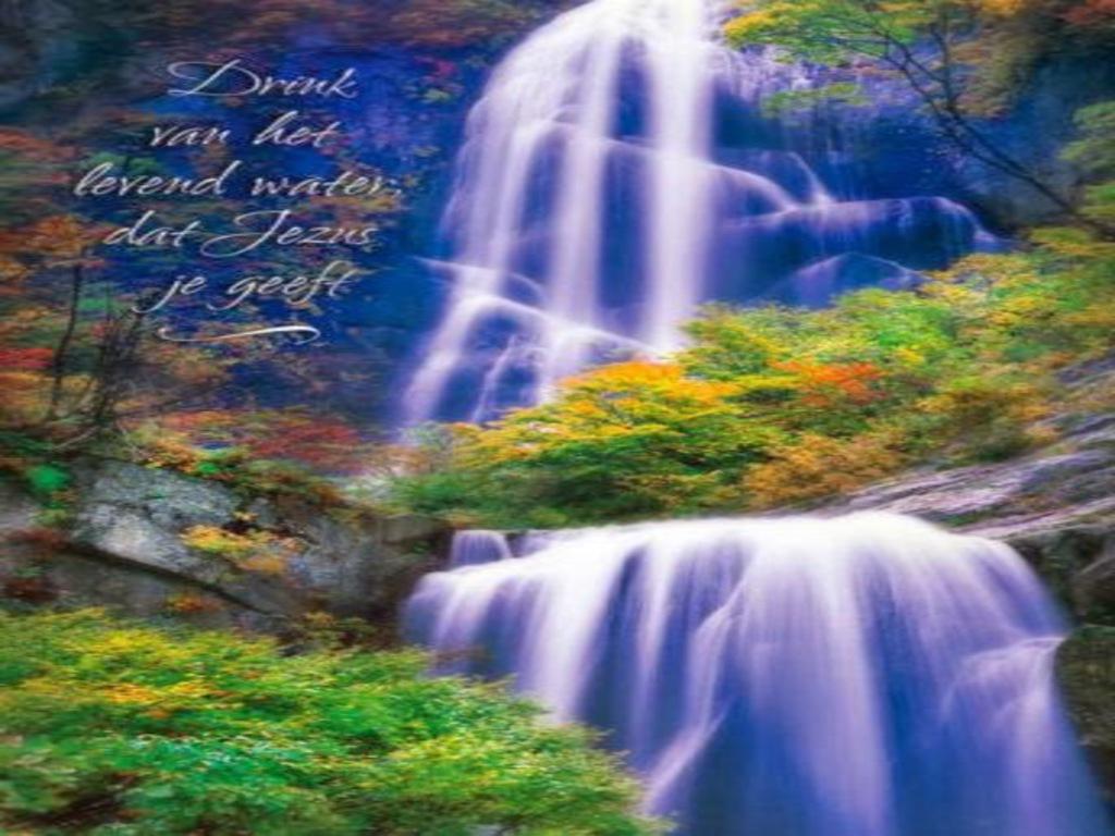 Jezus en maria groep.: een appeltje voor de dorst: jezus christus