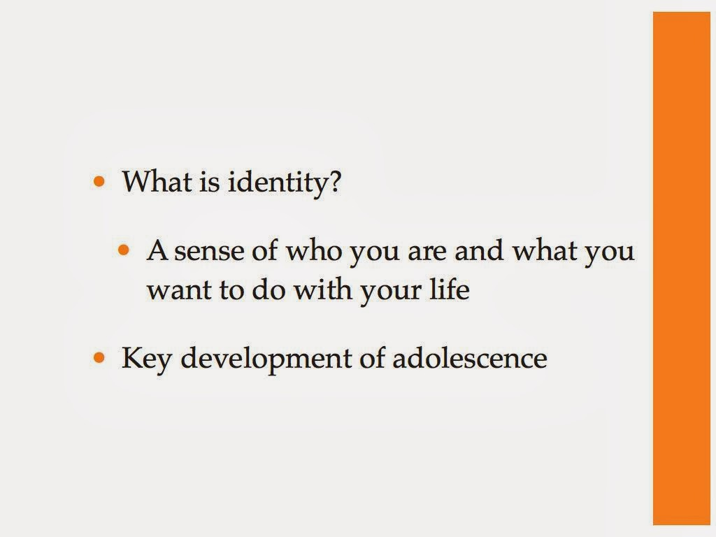 identity forming in adolescents essay