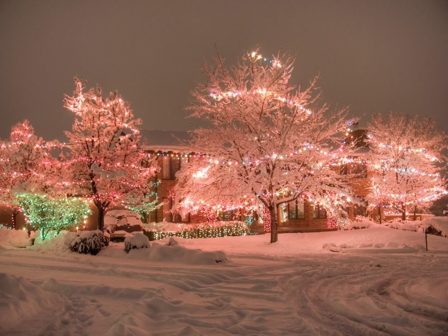 Amazing Christmas Lights ~ Damn Cool Pictures