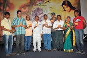 Jabali movie audio launch photos-thumbnail-10
