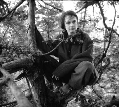 Julie Butterfly Hill Adventures in Treesitting (1999).avi