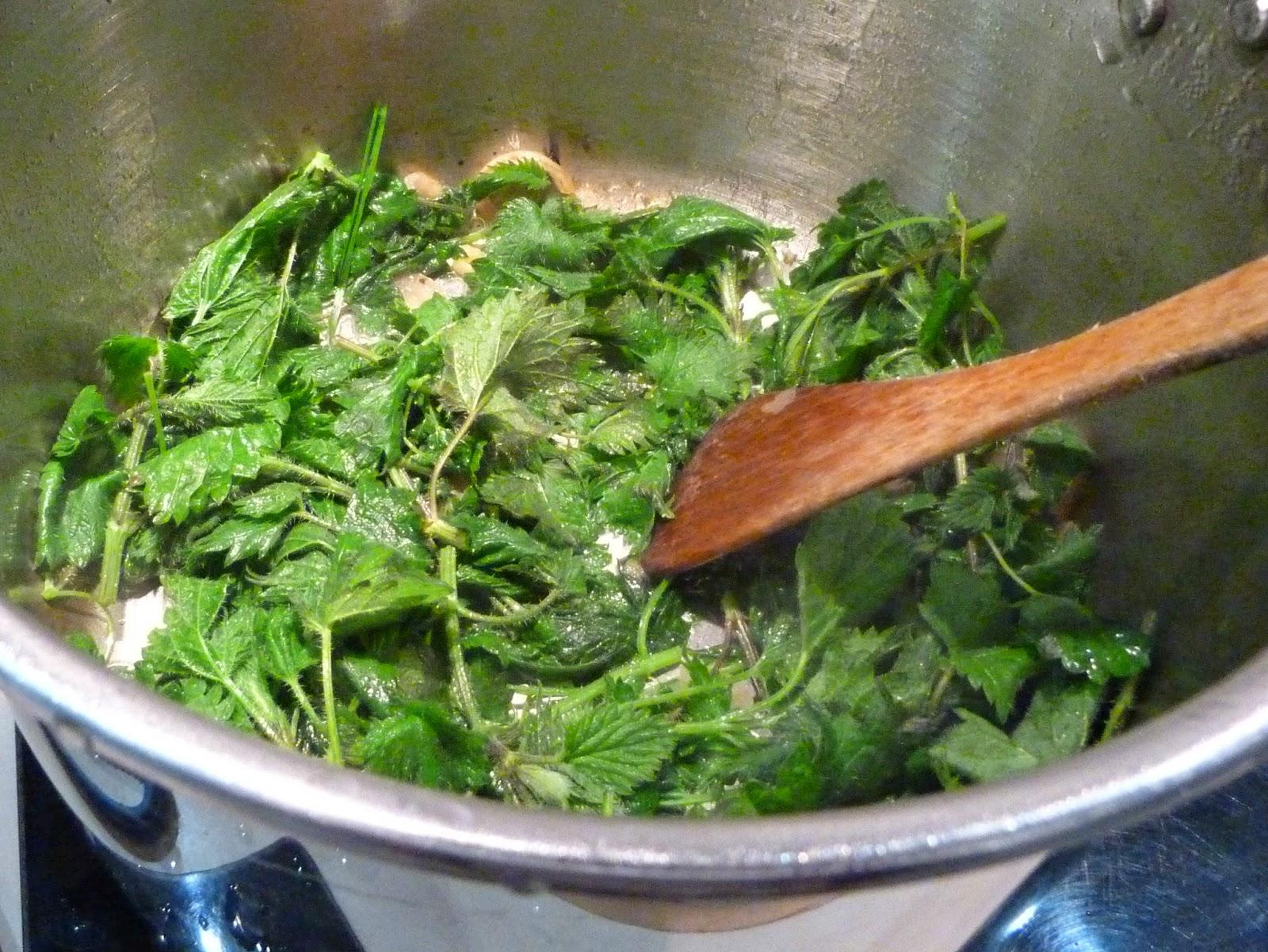 Au four et la moulinette des orties dans l 39 assiette - Quelles orties pour la soupe ...