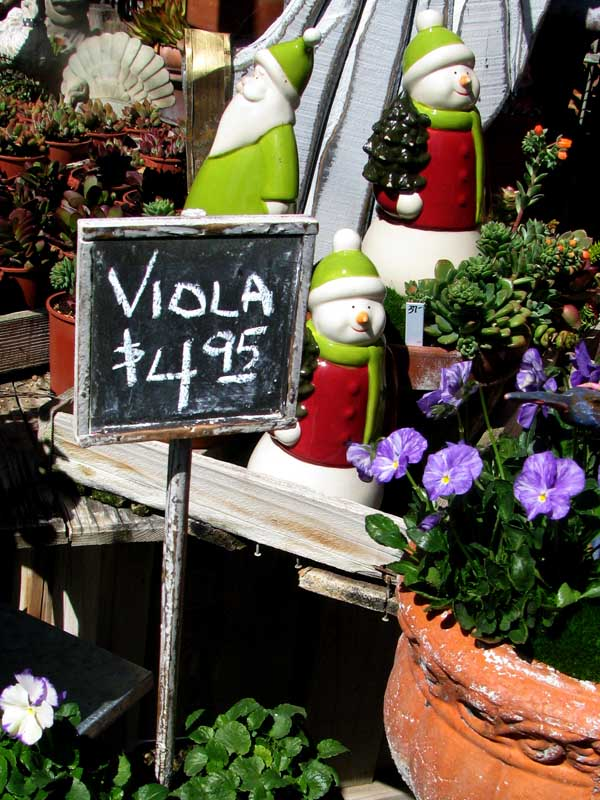 Musical Terms in the Marketplace - Viola $4.95