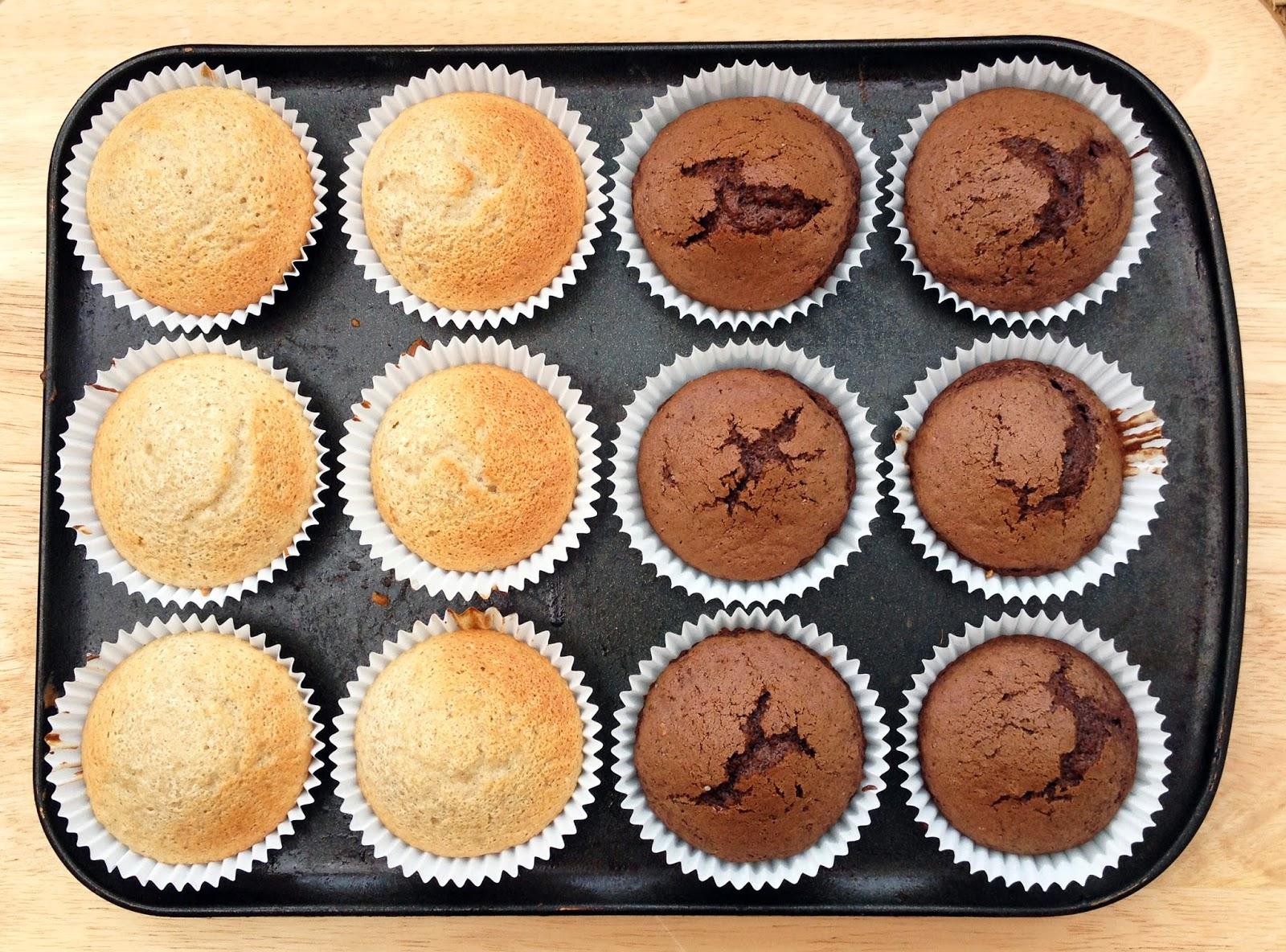 chocolate cupcakes, vanilla cupcakes
