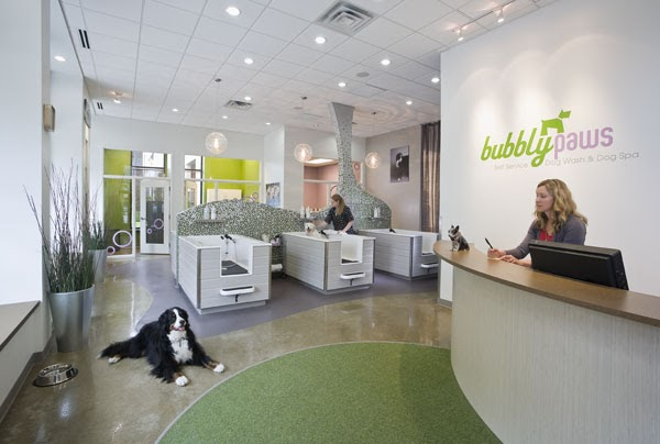 Imagine these retail store interior design dog spa for 4 paws dog salon