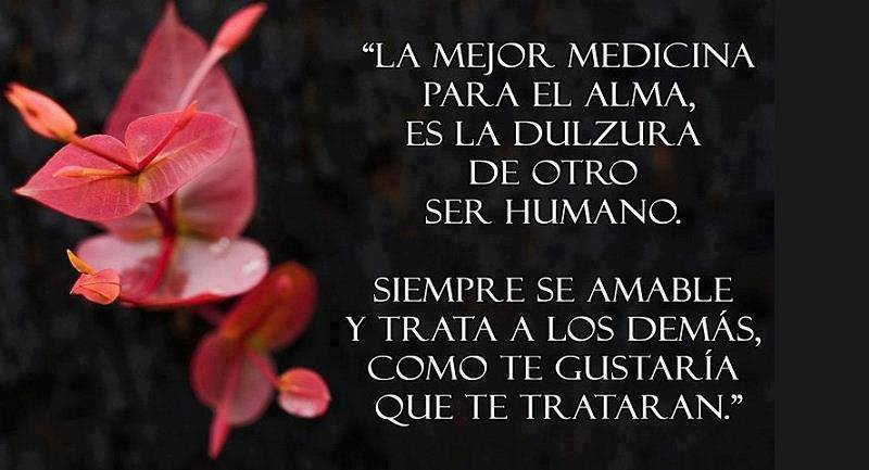 medicina para el alma