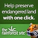 Help Preserve Our Rainforests!