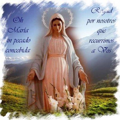 Virgen Maria Imagenes Religiosas